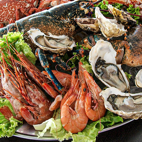 vitamin b12 shellfish